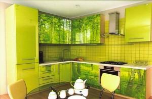 Кухня пластик 21