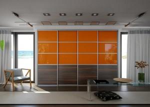 Шкаф-купе цвет стекло  2
